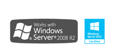 We work with Microsoft Server
